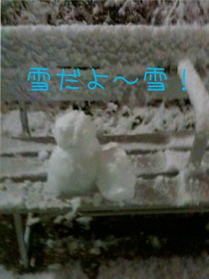 雪だるまダルマ